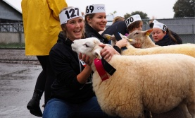 Four students with sheep at College Royal