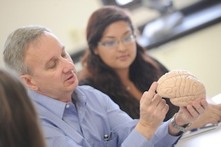 Dr. Baldridge discussing a model brain with students