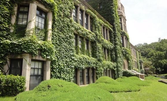 Yonsei University 1