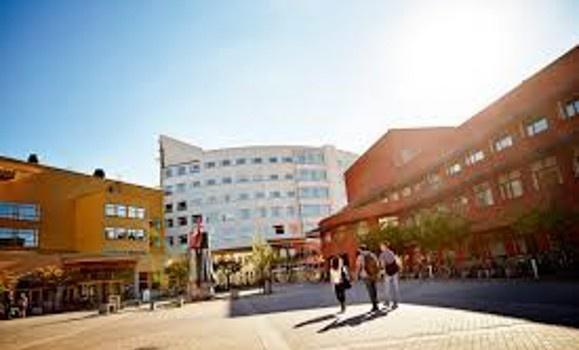 Jonkoping University 3