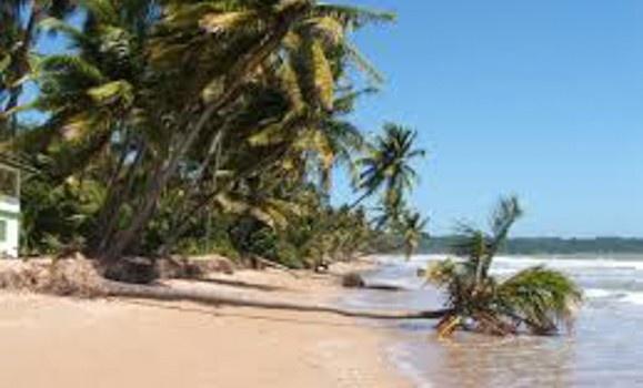 Trinidad1