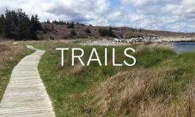 Trails_579x350