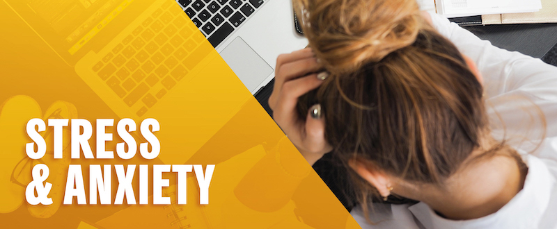 Stress and Anxiety. Photo of a student frustrated with their head on the desk