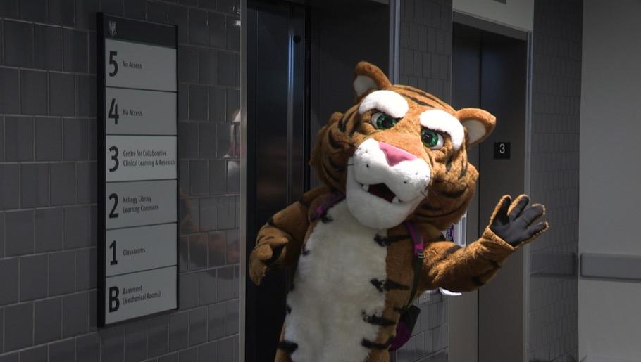 Tiger mascot waving