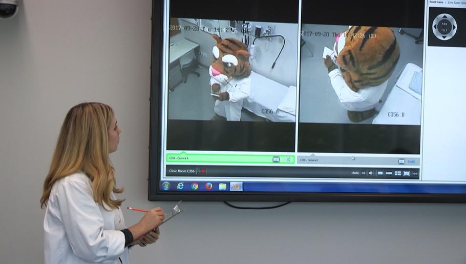 Professor watching tiger mascot on large video screen
