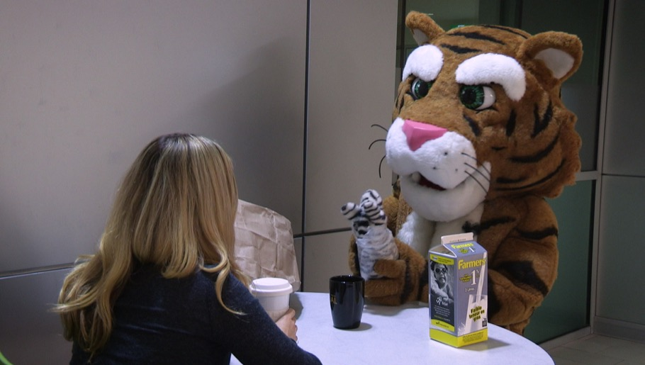Tiger mascot in lobby eating plush zebra