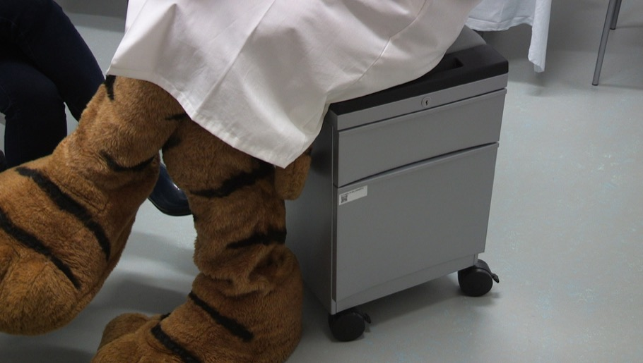 Tiger mascot sitting on cushioned filing cabinet