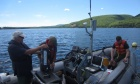 Fieldwork Report: Sampling Cape Breton's Whycocomagh Bay 2017