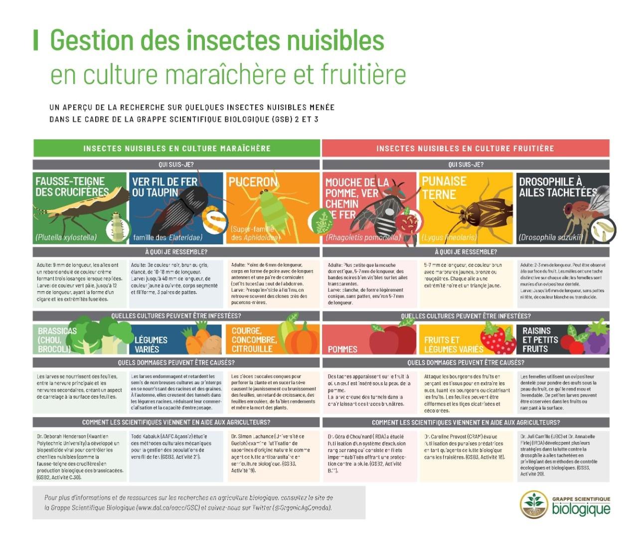 FINAL- Pest infographic-FR