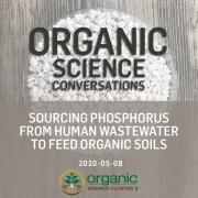 Sourcing phosphorus
