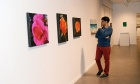 Showcasing Dal's Diverse Artistic Talents