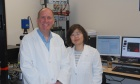 Dalhousie medical researchers bypass nerves to activate muscles directly with light