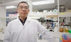 New Dal recruit researching how to treat deadly pathogen for cystic fibrosis patients