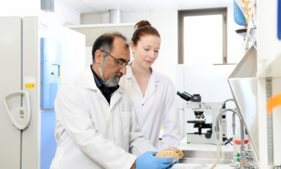 Molly Appeal to support advanced brain research with new tissue processing machine