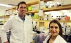 Molly Appeal‑funded equipment attracts immunity scientist to Dal