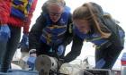 Setting sail for Ocean Sampling Day