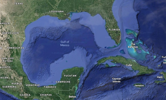 "News Release: low oxygen ""dead zone"" in Gulf of Mexico will be three times as large as Prince Edward Island, forecast finds"