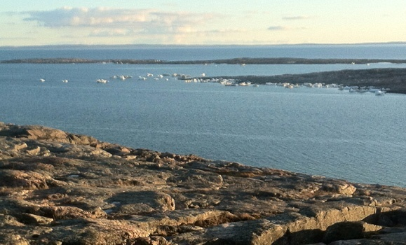 Protecting Canada's Coasts ‑ Government of Canada Invests in Projects to Help Restore Coastal Habitats in Nova Scotia and the Arctic