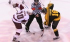 Body checking 'is part of the physical game of hockey'