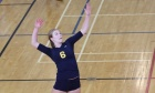 Volleyball Tigers add to 2014‑15 lineup