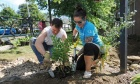 Earth Week: A celebration of sustainability