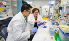 Dal researcher wins Canada's top immunology award