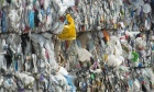 Why Canada's single‑use plastic ban could help the environment and wildlife