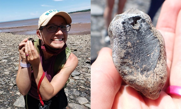 Dal instructor's field trip discovery of rare fossil a surreal moment for teacher and students alike