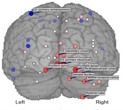 Task-Related Brain Areas Identified with Machine Learning