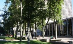 (08-10-06) Campus Random