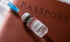CBC Radio's The House: Should Canada Issue Vaccine Passports?